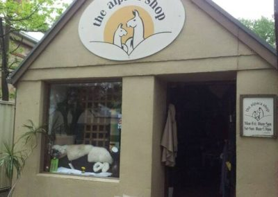 16 - The Alpaca Shop